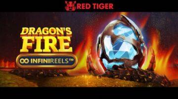 "Red Tiger's new Dragons Fire: InfiniReels video slot represents ""major new milestone"" in NetEnt studio cooperation"